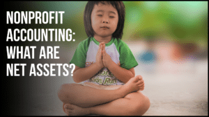 Nonprofit Accounting: What Are Net Assets? araize.com
