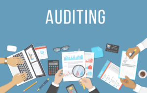 Nonprofit Audit Preparation and Requirements - araize.com